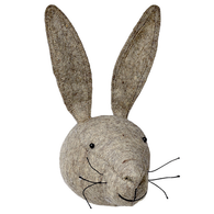 Grey Hare Head