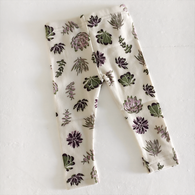Organic Cotton Baby Leggings, Succulents