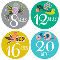Little Artist Pregnancy Belly Stickers (12), Lucy Darling