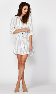 Ladies Dresses Online | Lottie Shirt Dress | FATE