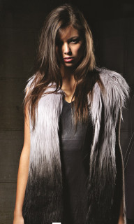 Jackets for Women | Alyssa Ombre Vest | FATE