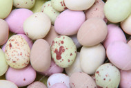 Chocolate Mini Eggs, Retro sweets, cheap sweets, haribo, swizzel matlow, cadbury, sweet shop, boiled sweets, online sweet shop, uk sweet shop, a quarter of, quarter of, fudge sweets, toffee sweets, liquorice sweets, sweets and candy, mollys mixtures
