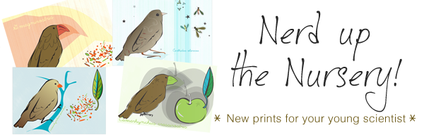 banner-finches.png
