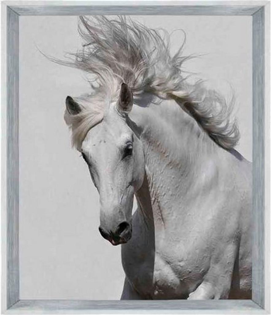 On Trend Image   Horse Magic   Print Decor, Melbourne