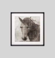 Print Decor Equestrian Story 2