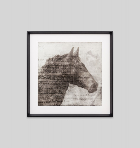 Print Decor Equestrian Story 1