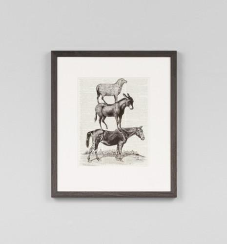 Animal Ride Horse
