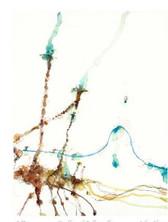 Giraffe and Balloons II | John Olsen | Print Decor