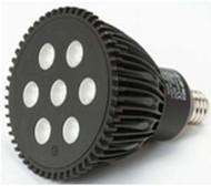 SPP PAR LED PAR 38 (<2000)