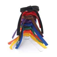 Standard Student Rank Belt