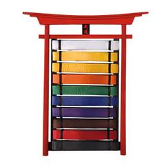 10 Level Belt Display