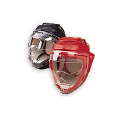 Headgear w/Clear Mask