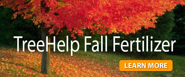 TreeHelp Fall Fertilizer