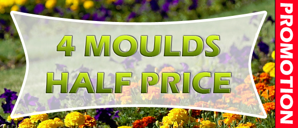 June Promotions - 4 Half Price moulds