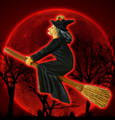 Halloween Wicked Witch