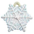 Christmas Snowflake painted.
