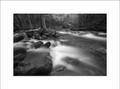 Confluences, Black & White, Little River