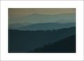 Evening, Clingmans Dome