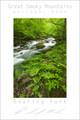 Smoky Mountains Poster - Roaring Fork #2