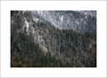 Winter, Clingmans Dome Ridges