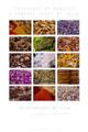 Moroccan Spices Fine Art Poster