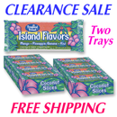 Island Flavors Bars TWO 24 ct Trays
