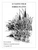 Mors Kochanski Booklet 21 Native Wild Edible Plants