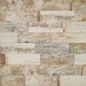 """Canyon Timber 6"""" x 24"""" Wood Look Porcelain"""