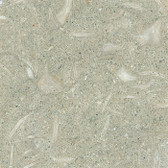 "Seagrass Limestone • 6"" x 6"" Honed Field Tile"
