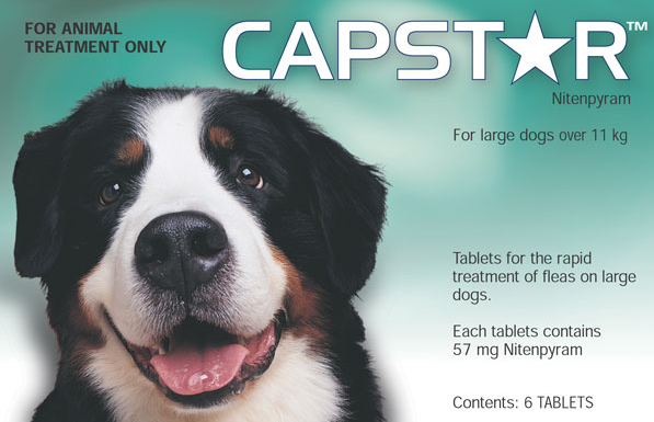Capstar Tablets 6 Pack Large Dogs 25 125 Lbs 11 55 Kg
