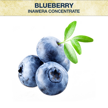 Inawera Blueberry Concentrate