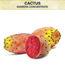 Inawera Cactus Concentrate