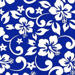 Blue Lagoon Poppy Scrub Hat