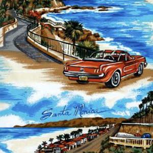 Carmel by the Sea Pony Scrub Hat