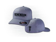 Tremendum Pictures Hat - Grey