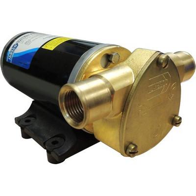 RWB Jabsco Ballast King Reversible Pump Kit 12v