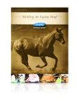 Building the Equine Hoof book