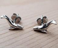 Whale Earrings - 925 Sterling Silver