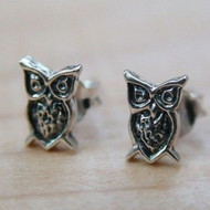 Tiny Owl Post Earrings - 925 Sterling Silver