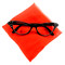 Hey Viv Cat eye Glasses and Red Scarf