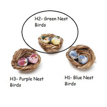 H2 Green Nest