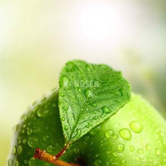HS Green Apple Hangsen e-Liquid