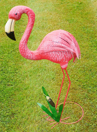 flamingo w/grass
