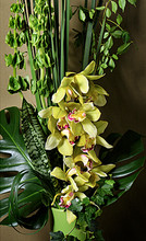 Dramatic arrangement of orchids and green foliages