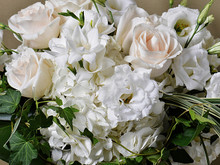 A subtle collection of cream, ivory and white flowers arranged in a glass bowl. Lush, fresh, quiet and soothing.