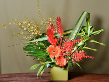 Colourful arrangement including exotic blooms from the tropics. Fun and dramatic!