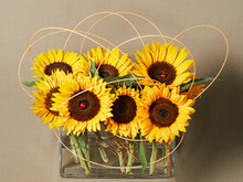 Bright and cheerful arrangement of festive sunflowers