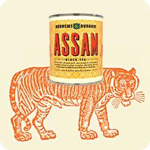 Tiger Assam