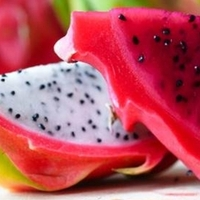 Dragon Fruit TFA