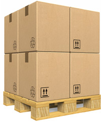 Free Shipping on Domenstic Order